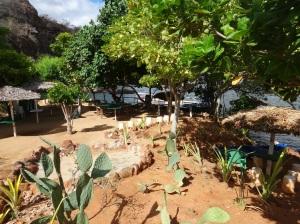 Jardim do Restaurante Show da Natureza